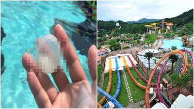 愛寶樂園泳池驚見「疑似男性精華液」 韓客po網爆料竟是大烏龍