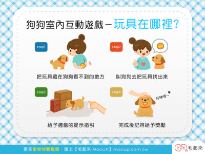 想和狗狗更親? 試試「找玩具」遊戲...4步驟超Easy!