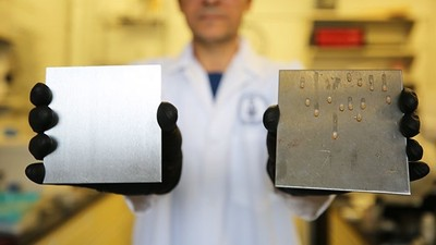 「食用油+不鏽鋼」防菌效果1000倍!強力沖洗後仍然有效
