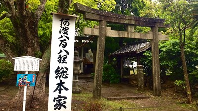 真實版《平成狸合戰》...取景神社將遭拆除 萬人連署請願保留