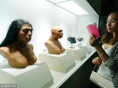 人類祖先直立人因懶惰而滅絕?