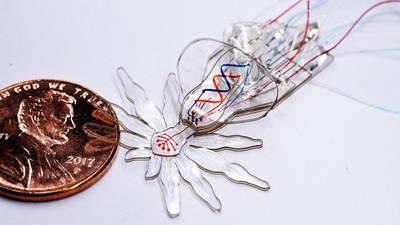 微創醫療植入「機器蜘蛛」…僅一元硬幣大 灌樹脂秒在體內爬起來