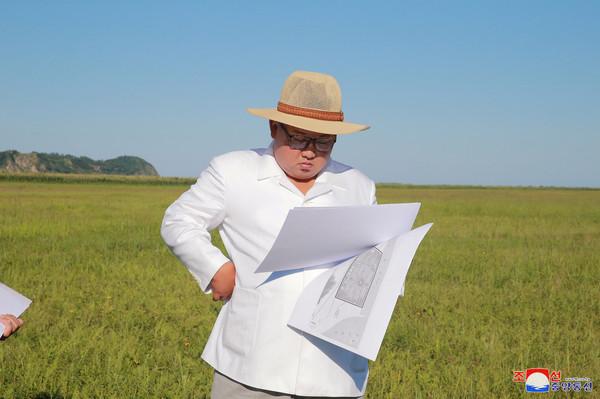 金正恩下田指導「溫室農場」 官媒呼籲川普:應大膽推動無核化