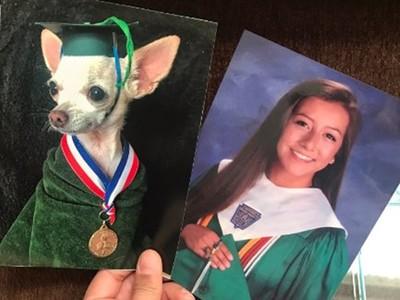 考驗親情的時刻?偷偷把家人照片換成狗 老媽每天經過都沒發現