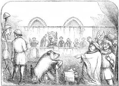 嫌老鼠太髒告上法庭 中世紀「動物審判」 竟還有律師幫辯護!
