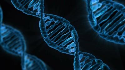 首批「基因靜默藥物」批准!使病變RNA無力化 減緩遺傳症狀