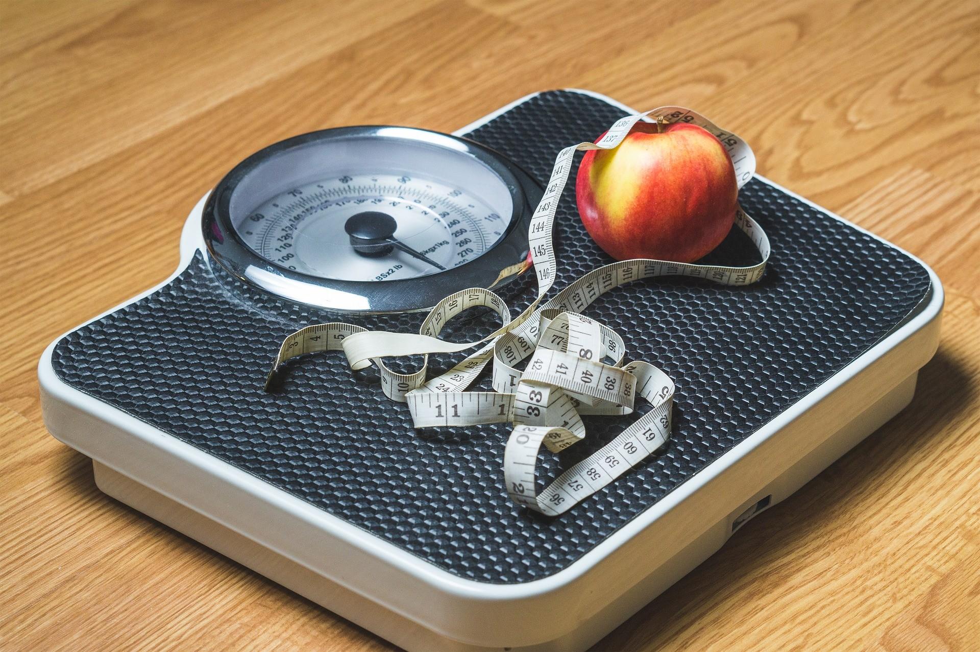 ▲▼減肥,PO53(圖/Pixabay)