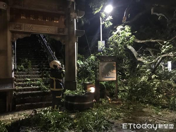 快訊/暴雨沖走土石!「圓山風景區」大樹斷根傾倒 警消封鎖現場