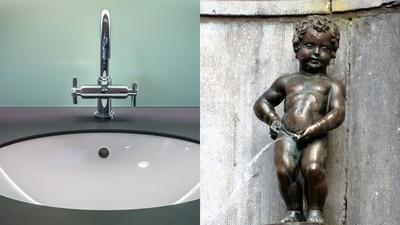 老公偏愛尿在洗手台 講不聽還辯「洗掉就好」 網:尿在碗裡試試