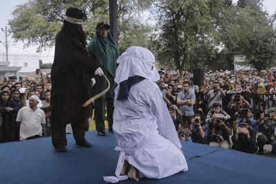 獵紅毛猩猩鞭刑100下!印尼亞齊頒新法