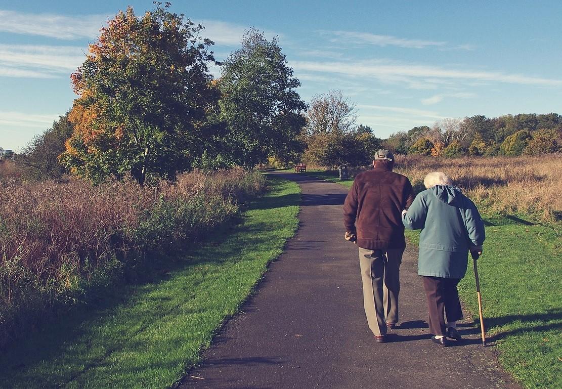 ▲▼老年人,老人,老婆婆,婦人。(圖/翻攝自pixabay)