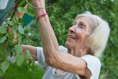 一輩子從容、自信!老年靠3大心法 優雅活到最高境界