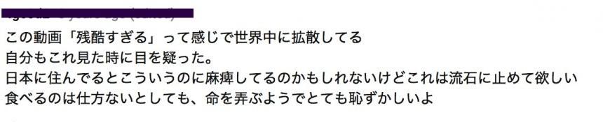 大檸檬用圖(圖/翻攝自youtube@richayanami)
