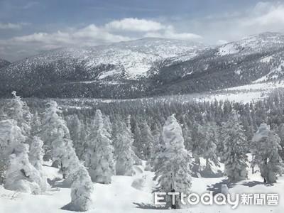 阿信故鄉滑雪團開賣十天銷售七成 雄獅包機直飛山形十月首航