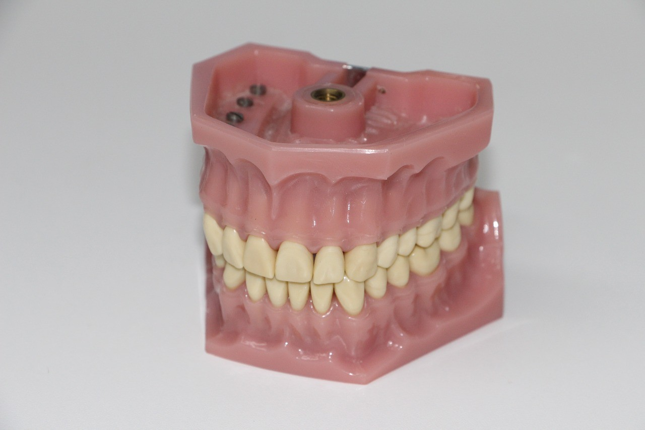 ▲▼假牙,牙齒。(圖/翻攝自pixabay)