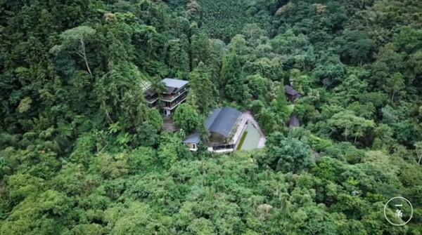 ▲▼清大生命科學系教授李家維30年前在苗栗買下了一處山頭,悄悄復育的多種珍奇植物。(圖/翻攝臉書「一条 YIT」)