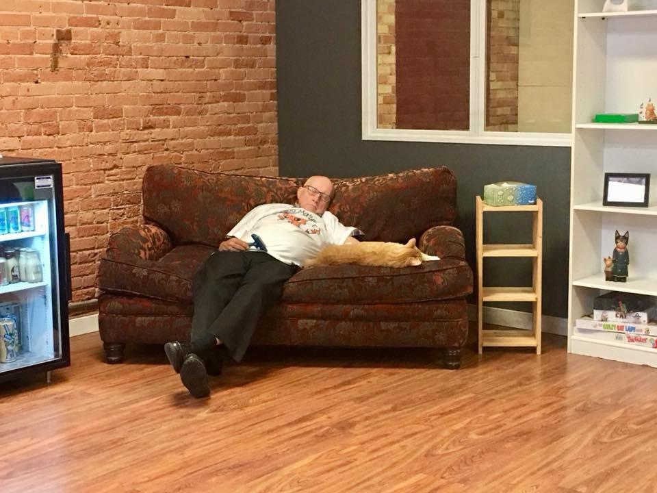▲▼ 阿伯梳貓睡著。(圖/翻攝自Facebook/Safe Haven Pet Sanctuary Inc.)