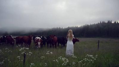 吟遊系正妹開唱「古代牧牛歌」 牛牛一聽…自動貼上跟回家