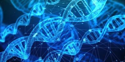 多年懸案一一偵破!「DNA族譜鎖定法」沒人鳥 出手4小時就破案