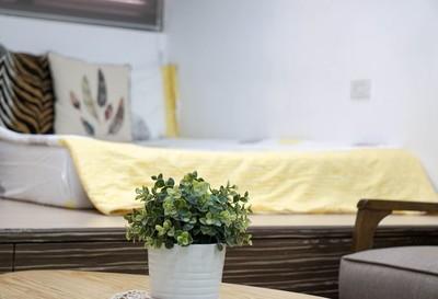 「室內放闊葉盆栽」可降PM2.5
