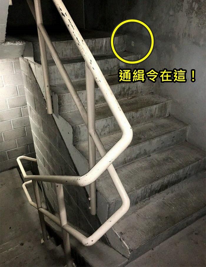大檸檬用圖(圖/翻攝自boredpanda)