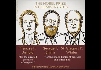 女性再獲獎 美英3學者獲諾貝爾獎