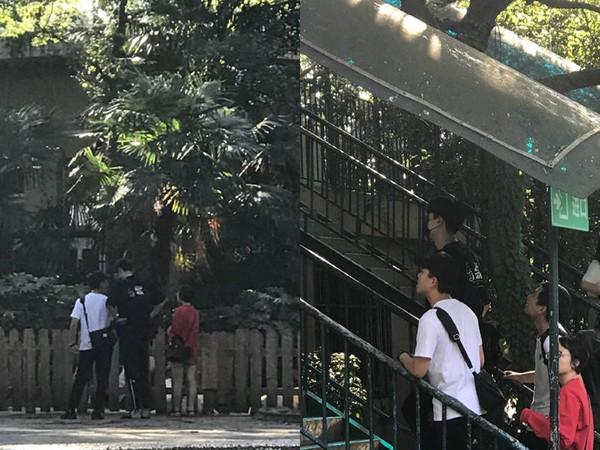 ▲▼網友逛上海動物園,巧遇胡一天。(圖/翻攝自微博)
