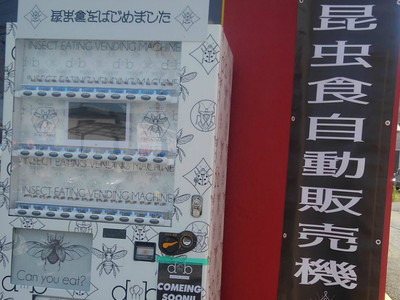 世界第一「昆蟲零食販賣機」! 走在路上卡滋卡滋隨時補充蛋白質