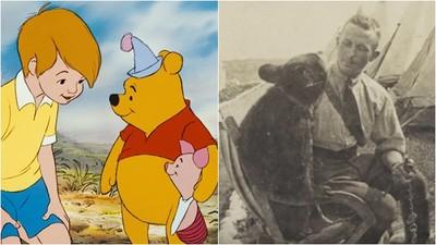 真有其熊!維尼熊104年前是倫敦動物園大明星 曾隨獸醫恩人入軍伍
