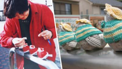 奶奶覺得你們冷!江之島小麻雀專屬千件新衣 通通由她親手編製