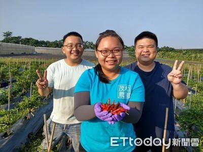 青農劉鎔甄 栽種有機蔬菜有一套