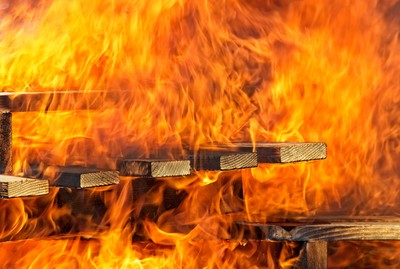 前妻打火機嚇鸚鵡 房子整間燒毀