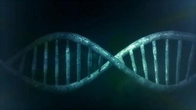 2025年單身男女可透過DNA配對約會