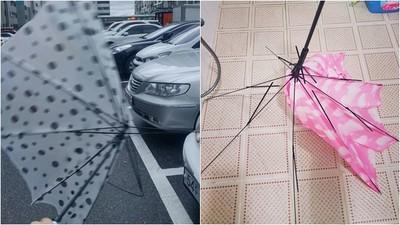 南韓大創「避買」雨傘!狂風一吹5秒內崩解 網:根本羞恥Play