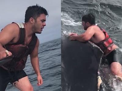 拿刀跳上鯨魚背!熱血漁夫猛割斷纜繩,不顧安危只想讓牠自由
