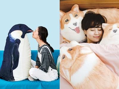 日本超擬真動物收納,大企鵝收棉被