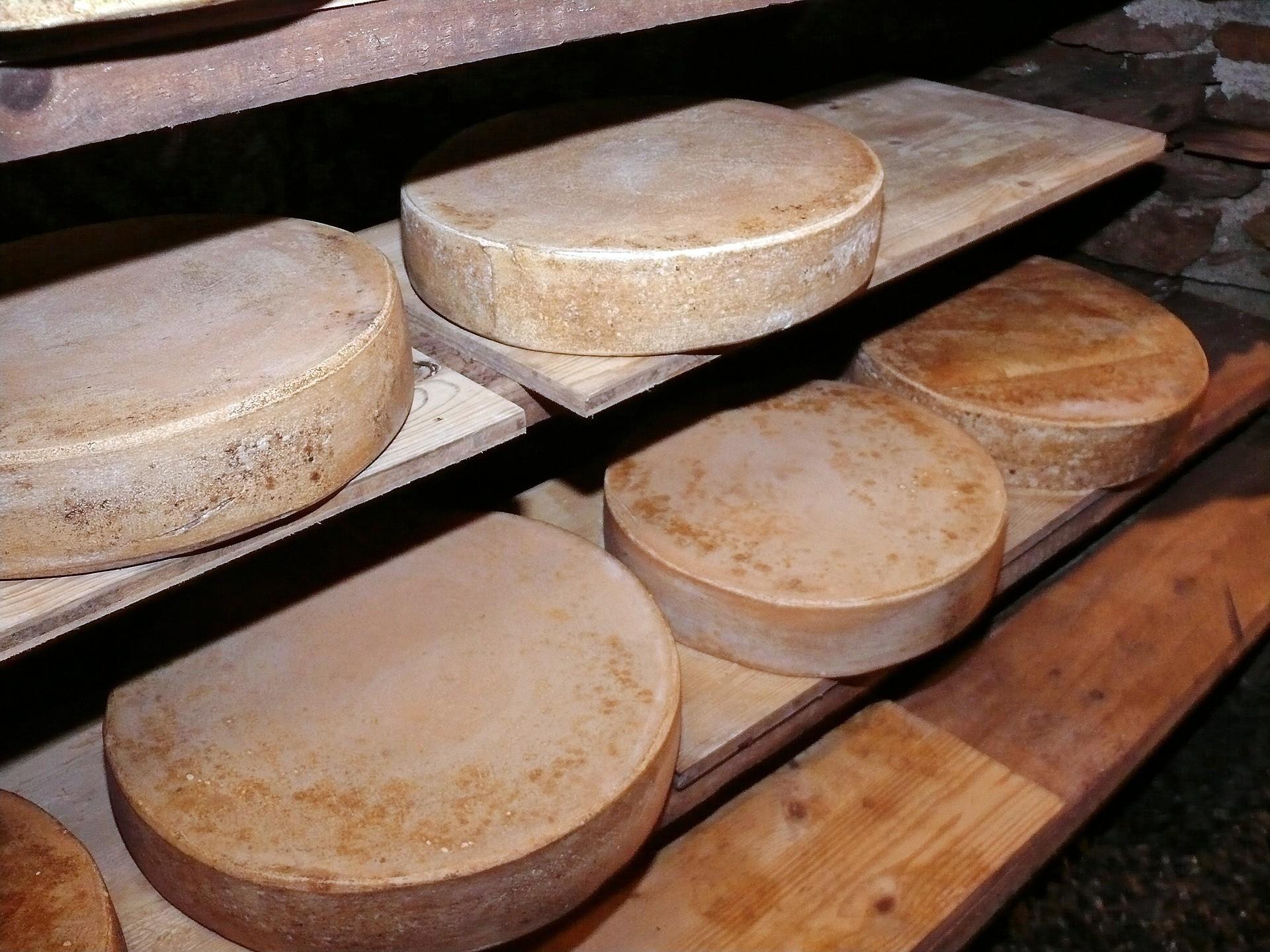 ▲硬乳酪,漫遊古英國。(圖/取自免費圖庫pixabay)