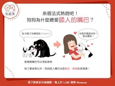 狗狗為啥喜歡舔人的嘴巴?「3甜蜜原因」曝光...牠愛死你啦