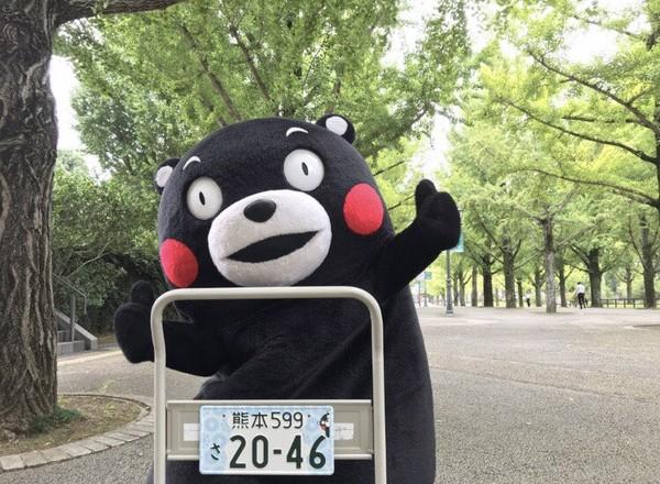 ▲別再叫熊本熊,官方正名酷MA萌!(圖/翻攝自推特/くまモン)