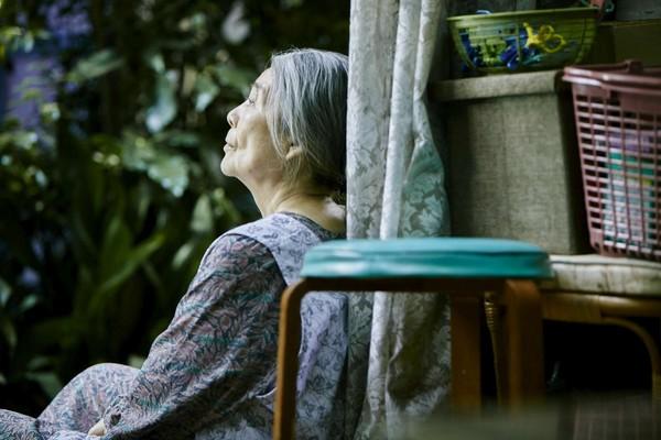 ▲▼「樹木希林:她挽救了孤獨的我們」小型專題回顧展《仙人畫家:熊谷守一》、《小偷家族》、《橫山家之味》、《比海還深》、《戀戀銅鑼燒》。(圖/高雄電影節提供)