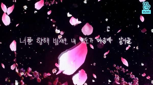 ▲▼ Wanna One解散倒數 「手寫離別訊息」曝光:把我們刻在心裡(圖/翻攝自Vlive)