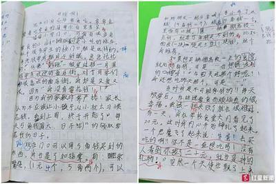 每天5角人民幣零錢 小學生寫作文嘆