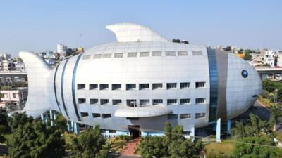 最狂政府機關!印度漁業發展廳「就是一條魚」,開地圖才知不是P的