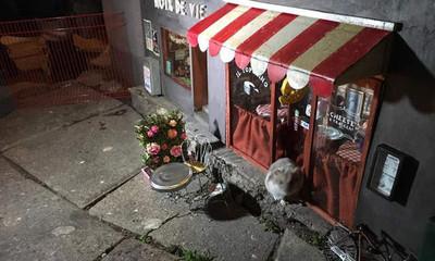 過街老鼠也有房子住!街邊「30公分迷你小店」 有餐廳吃還有遊樂場玩