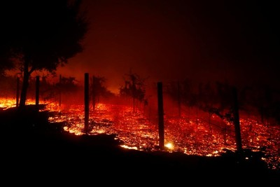 北加州停電一週 80萬戶遭殃搶物資