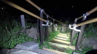東京最猛鬧鬼景點! 翠綠公園下埋著「二戰實驗品」百餘具人骨