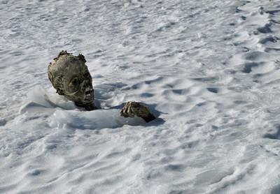 遺體冰封59年 3登山客回家了