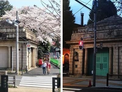鐵道迷尖叫!停用21年夢幻地鐵站重見天日 東京都心廢止站限期重生