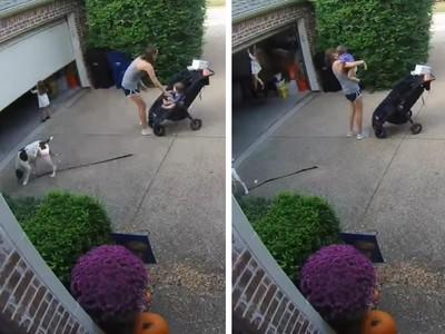 1母2寶1條狗 老媽忙顧嬰兒車 一回頭女兒吊在半空中