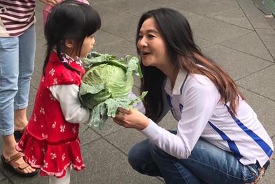 應曉薇年年兩次義賣高麗菜助農民